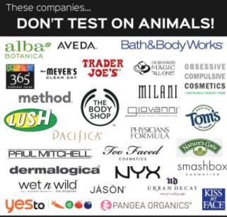 Don't Hurt Them, Pet Them: Animal Cruelty
