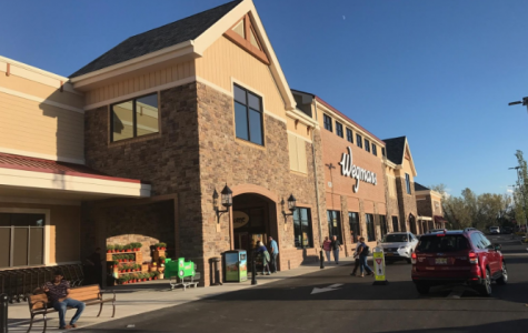 Wegmans Impact on Hills: Great or Hate?