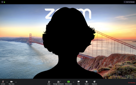 A silhouette in front of a common virtual background offered by Zoom, a video conferencing service. Some students choose to turn off their camera or mute their microphone during virtual classes.