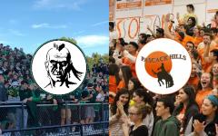 Cowboy and Indian history contributes to broader mascot debate