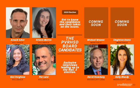 Who they are and where they stand: The Pascack Valley Regional Board candidates