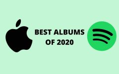 The 12 best albums of 2020